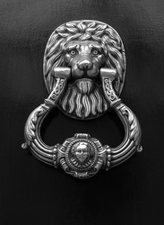 Lion Knocker, Madrid, Spain  2014